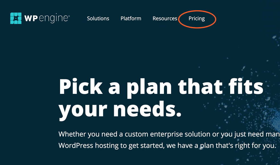 How to Build a Website in 2020 - Select a hosting plan with WP Engine